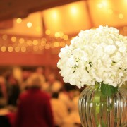 Hydrangea Reception Arrangement